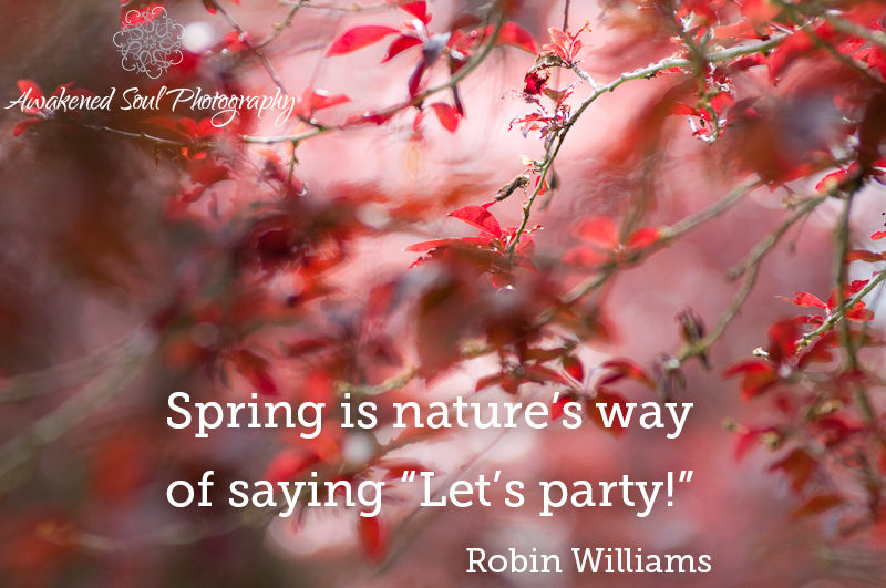 "Spring is nature's way of saying ""Let's party!"""